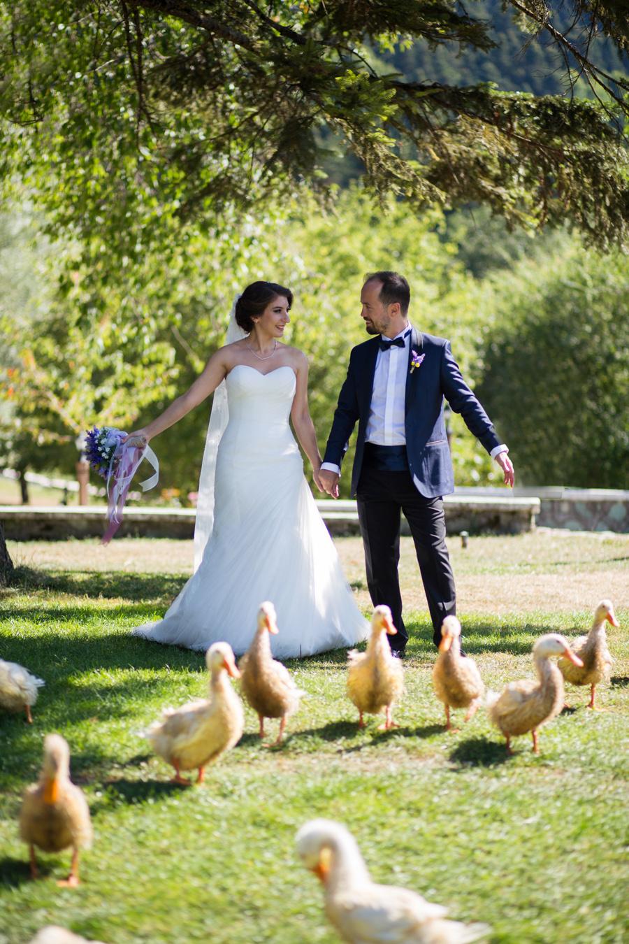 gölcük düğün fotoğrafları (2)